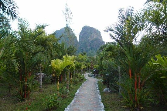 Hotel Khao Sok & Spa: ホテルの庭