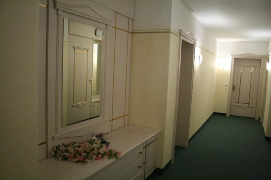 Hotel Am Schlosspark: HOTEL