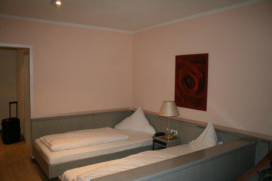 Hotel Am Schlosspark: CAMERA