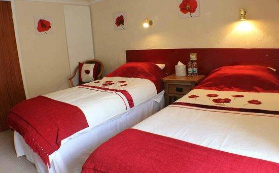 Afon Duad Inn : Twin and family room