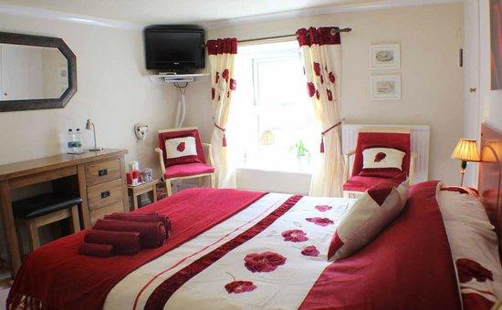 Afon Duad Inn : Double room