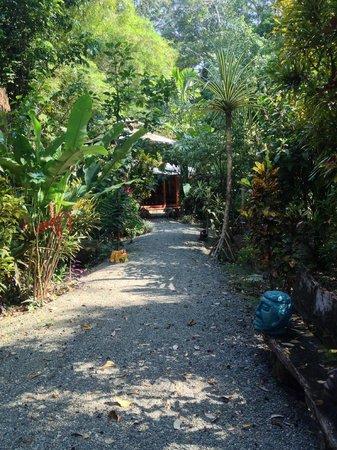 Congo Bongo Ecolodges Costa Rica : Pfade auf dem Gelände