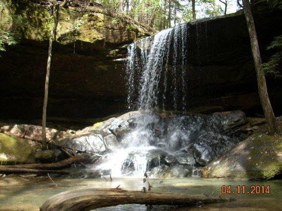 Alabama: Turkeyfoot Falls