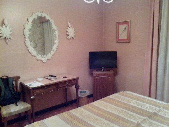 Hotel Al Camin: Стол, телевизор