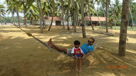 Estuary Island: Hammocks and swing