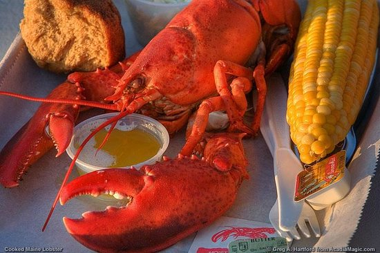 The Birches Bed and Breakfast: Fresh Lobster with butter & corn