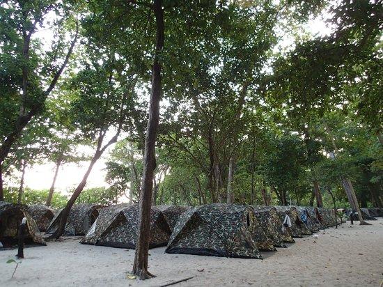 Similan Islands National Park Bungalows: テント