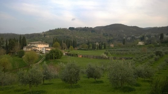 Villa Campestri Olive Oil Resort: A walk in the olive grove, then sit and enjoy the view
