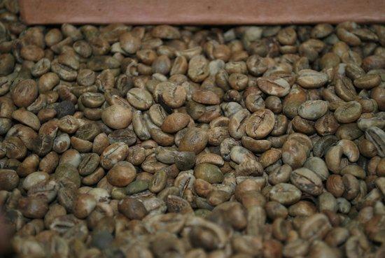 Oka Agro Wisata: raw, uncleaned beans