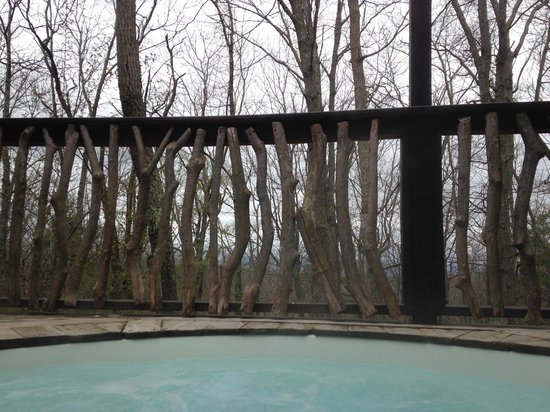 Shoji Retreats: View from the hot tub