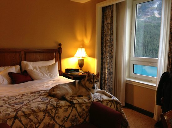 Fairmont Chateau Lake Louise: Gold floor suite, dog friendly