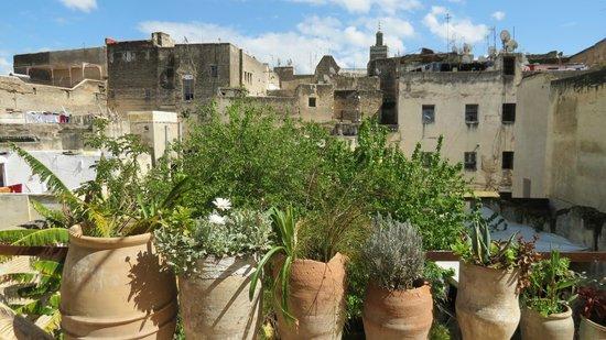 Riad Idrissy : Blick von der Terrasse