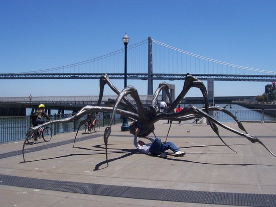 Hyatt Regency San Francisco: My spider battle at nearby Rincon Park