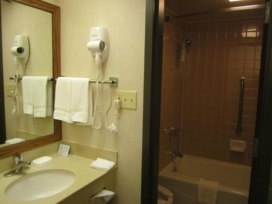 Quality Inn Schaumburg: compact bathroom