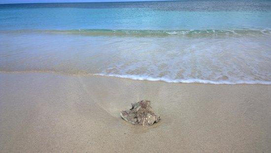 Cocobay Resort: Mare
