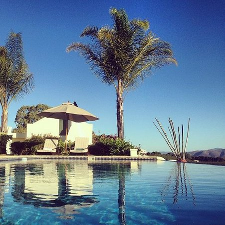 Rosendal Winery & Wellness Retreat: Poolview