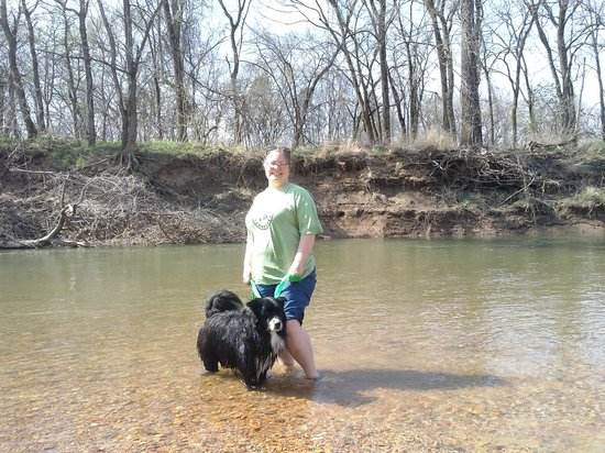 St. Francois State Park: River by picnic area