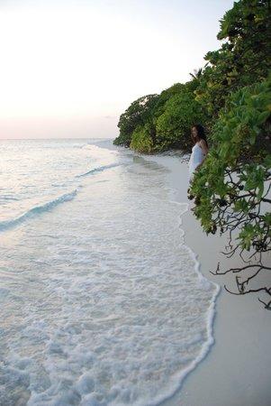 Soneva Fushi Resort : Beach