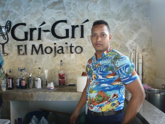 IFA Villas Bavaro Resort & Spa: Pool bar / bon service