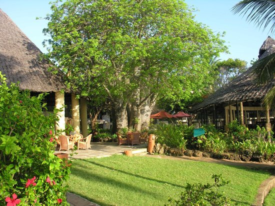 Baobab Beach Resort & Spa : restaurant et bar de part et d autre du baobab