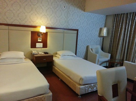 Hotel Paraag: Delux room with twin bed
