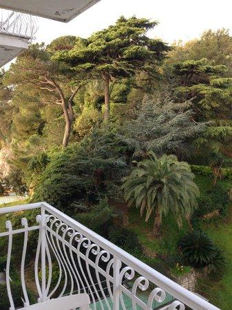 Grand Hotel Miramare : Vista da camera lato parco