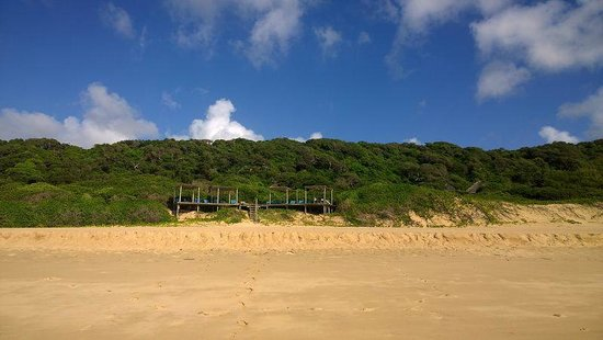 Thonga Beach Lodge: Sundeck from Beach