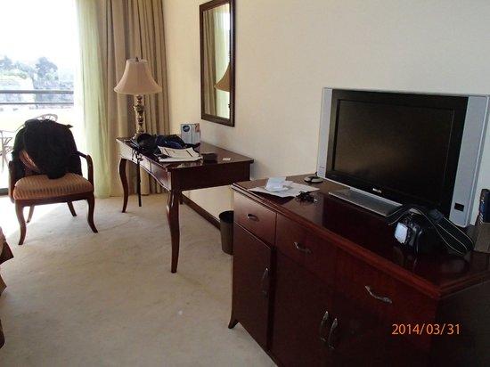 Excelsior Grand Hotel: TV