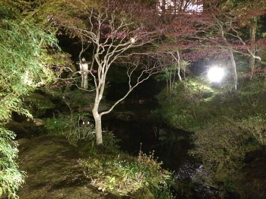Arai Ryokan: 夜の中庭も風情があり
