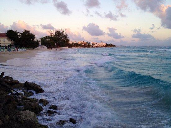 Coral Mist Beach Hotel: Beach