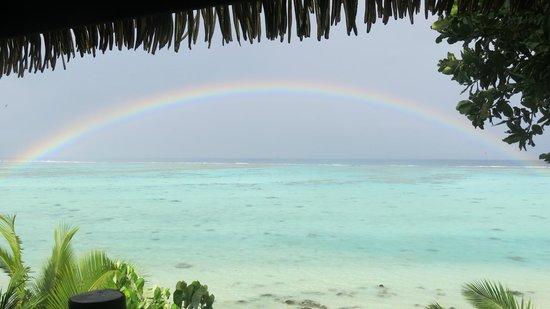 Pacific Resort Aitutaki: view while at breakfast