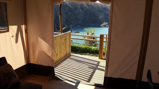 Sandaway Beach Holiday Park : View from tent