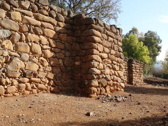 Tel Dan: Israelite wall from King Jeroboam's time