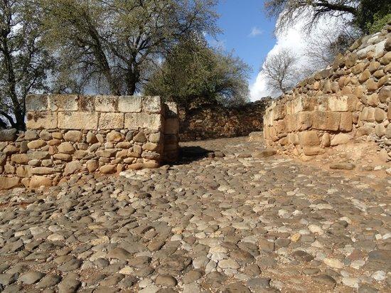 Tel Dan: Israelite Gate with original paving stones