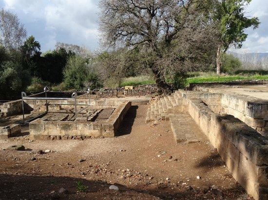 Tel Dan: Altar and sacrificial high place