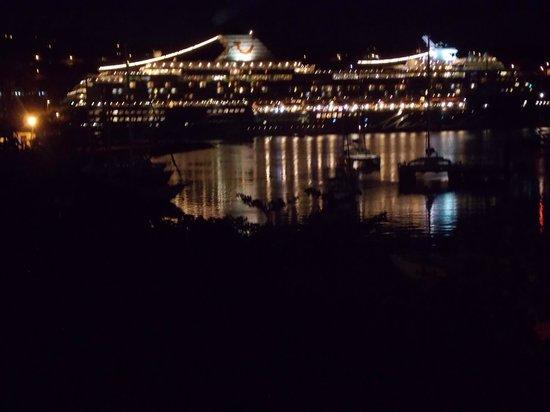 Lotus Chi Garden : Cruise ship at night