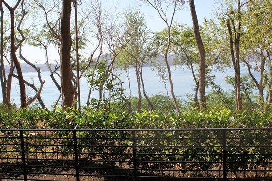 Four Seasons Resort Costa Rica at Peninsula Papagayo: View from back patio