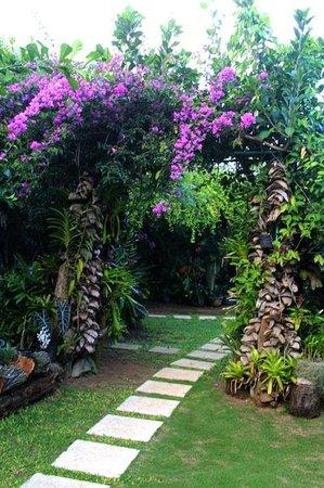 Le Manotel : jardin