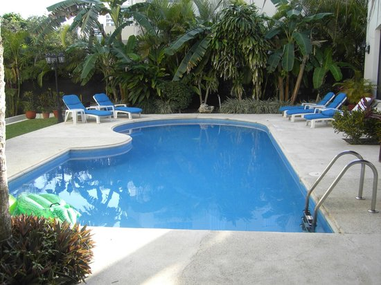 Green Oasis Home Boutique : Pool