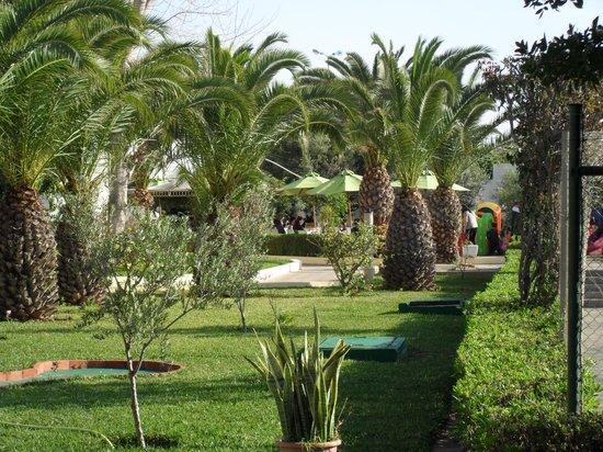 Soviva Resort : hotel grounds