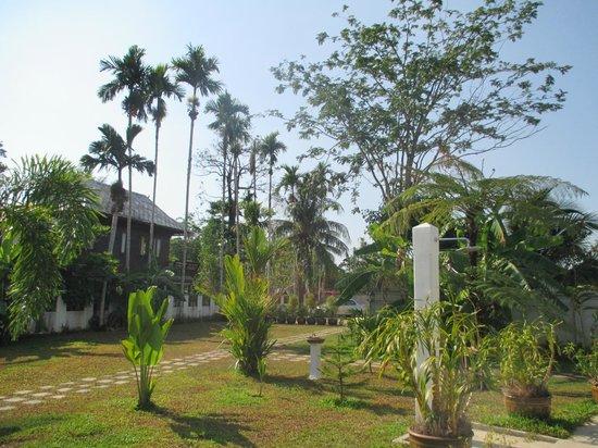 Villa Colina: jardin