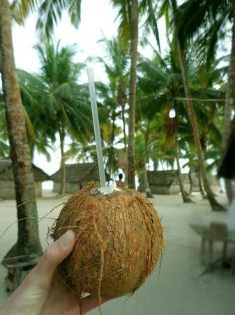 Franklin's: coconuts and rum?