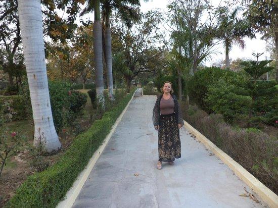 Ramada Khajuraho: Um aspecto do amplo jardim.