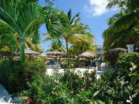 Grand Palladium Lady Hamilton Resort & Spa: Main Pool
