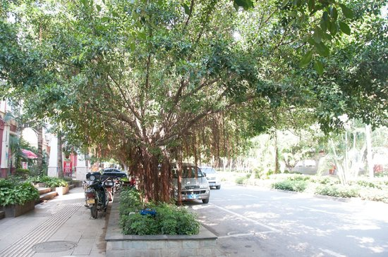 MeiMei Café : Street view, meimei is to the left