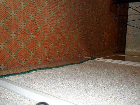 Hotel Columbus: carpet in bedroom
