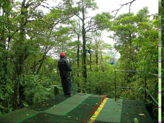 Costa Rica Sky Adventures - Monteverde Park : Canopy