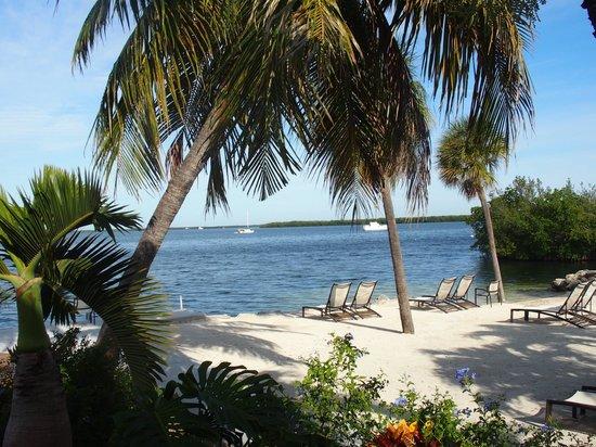 Hampton Inn Key Largo: La plage le matin