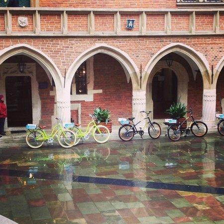 Krakow Bike Tour: At the university