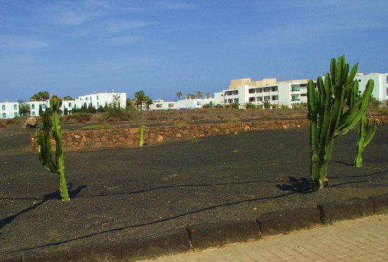 Blue Sea Costa Teguise Beach: View of  Hotel from the amazing walkway that follows the coastline